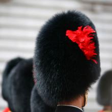 Detail of the hat